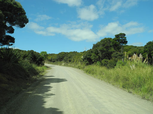 Spirits Bay Road