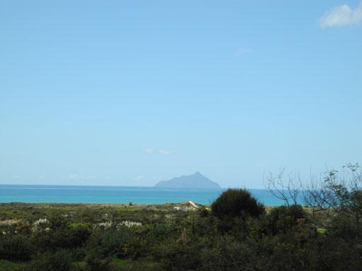 Taranga Island?