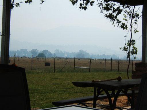 das ist kein morgennebel sondern rauch vom buschfeuer einige kilometer weiter rechts