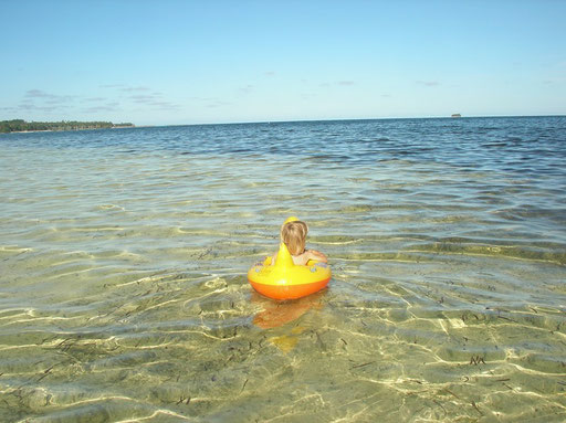 Un canard dans le Pacifique !