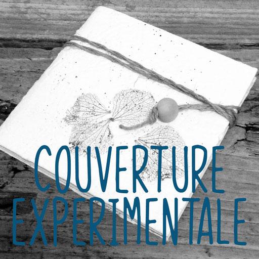 couverture expérimentale, création reliure cousue Marie Donnot, atelier idéEphémère, 64260 Bielle
