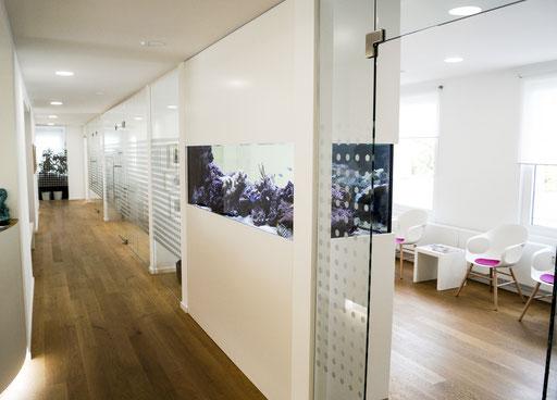 Ganzglasanlage - Besprechungsraum - © Glaserei Allgäuer