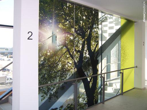 Digitaldruck - Glasabtrennung - © Lang u. Lang