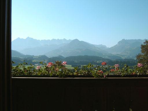 Aussicht vom Balkon auf das Kaisergebirge