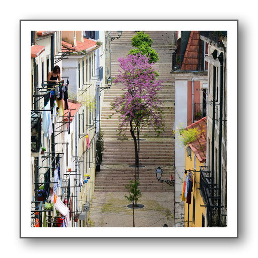 Foto Stadt + Land -Lissabon 24
