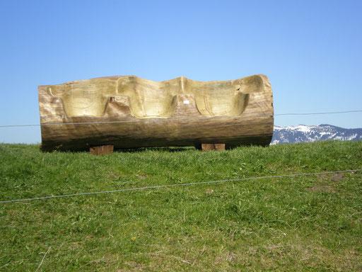 Fichtenholz Bank (7 Plätze) auf dem Rämisgummenhoger