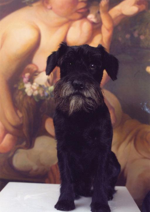 """""""Moritz"""" vor einem Bild von Yongbo Zhao (2007) (Foto: Wolfgang Kleber)"""