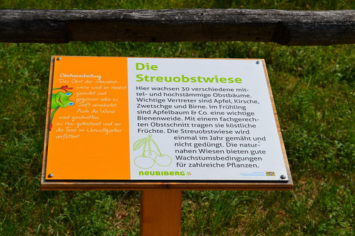 Streuobstwiese