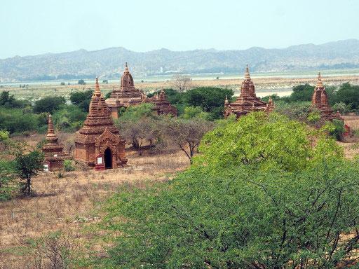 Die Pagoden erstrecken sich teilweise fast bis zum Irrawaddy