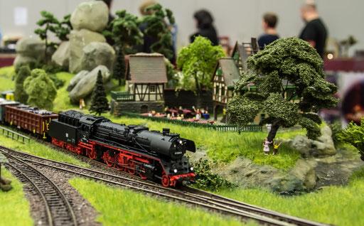 BR41 der DR durchfährt mit Ihren Güterzug den Hp Elbblick