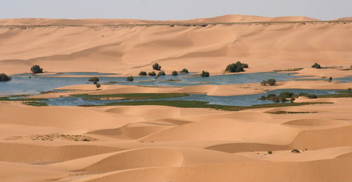 WEST SAHARA LAAYOUNE