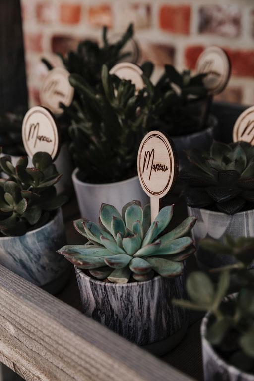 Plantenprikker