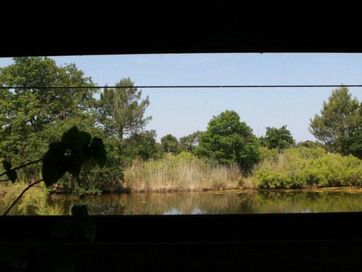 """Le Teich, Bassin Arcachon Tourisme - Hébergements Groupes """" Maison de la Nature"""""""