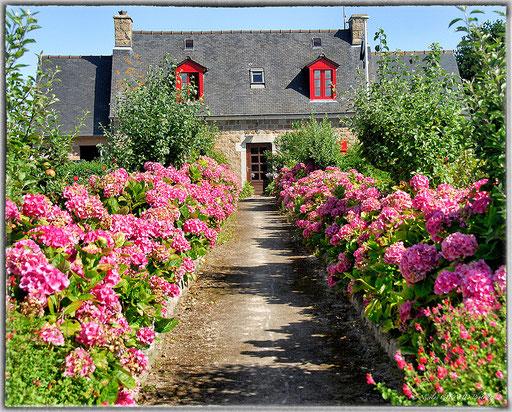 Ile de Bréhat - Bretagne © Nicolas GIRAUD