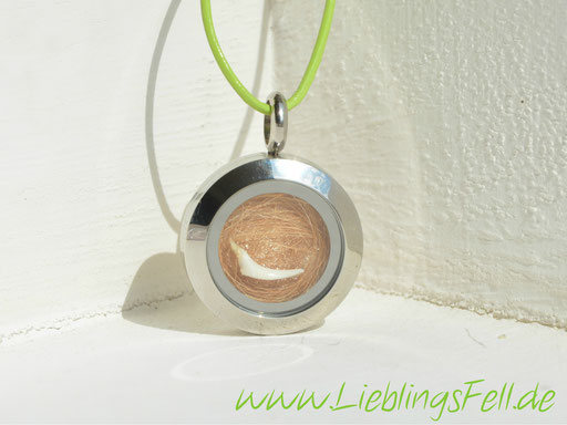 Kleines Edelstahlamulett (2 cm) mit einer grünen Lederkette -45 €- (Bild K17)