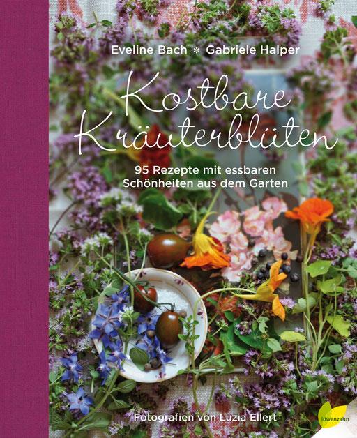 Umschlag-Gestaltung, Typografie und Satz • Löwenzahn Verlag