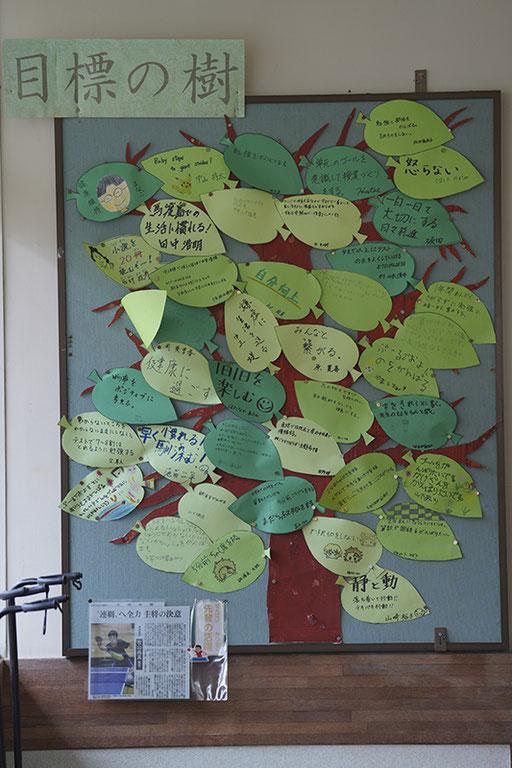 全校生徒の「目標の木」アットホームな学校です(馬渡島)