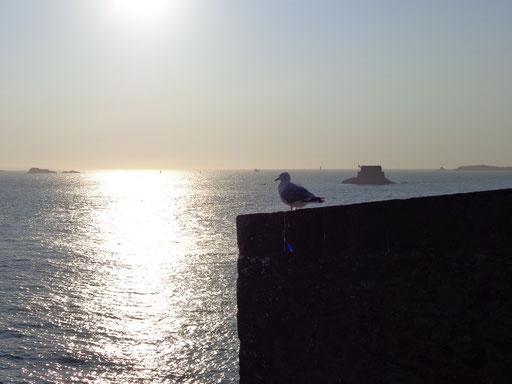 La baie de Saint-Malo au couchant