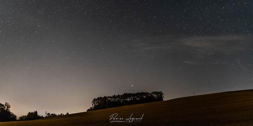 Juste avant le levé de Lune sur les petits sapins, Estissac - FR10