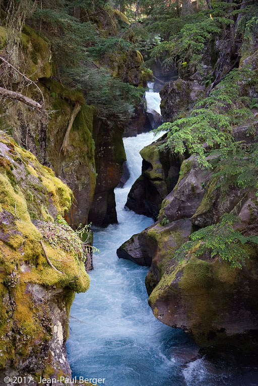 Glacier Park - Avalanche trail