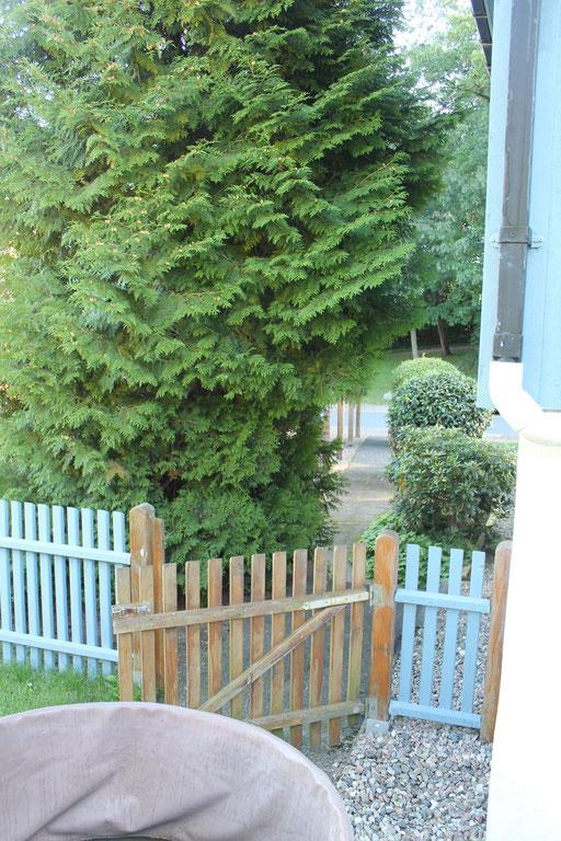 Nistkastenbaum-Beet - Die Gartenpforte soll verlegt werden