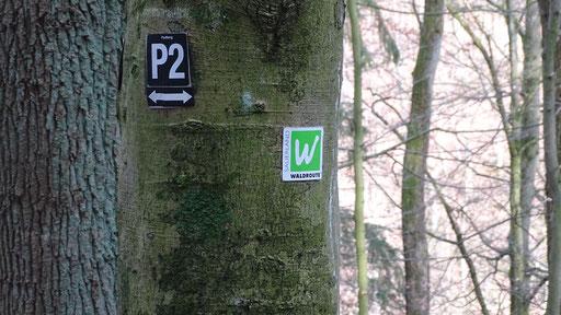 Wanderweg P2