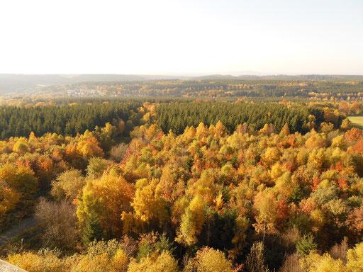 Blick vom Hochsollingturm.