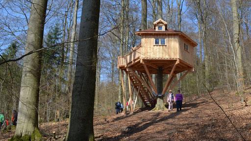 Tag der offenen Tür / Waldmarkt 2017. Bild: Baumhaushotel Solling.