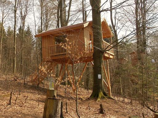 Das Baumhaus Refugium ist fertig.