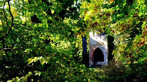 MoFoUEBreidings Garten Bank