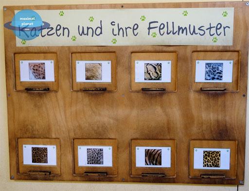 infoschild Zoologischer Stadtgarten Karlsruhe