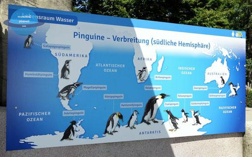 Infotafel Zoologischer Stadtgarten Karlsruhe