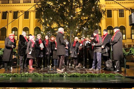 10.12.2018 Adventmarkt Schönbrunn