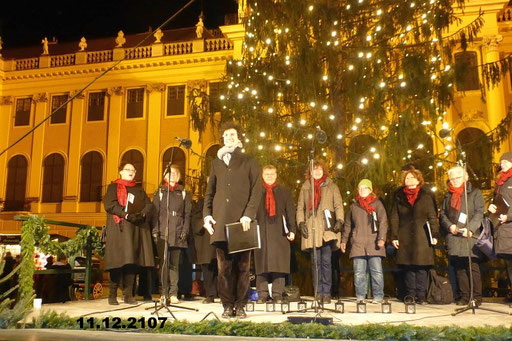 11.12.2107 Weihnachtsmarkt Schönbrunn