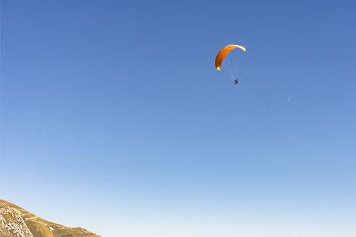 Gleitschirmflieger hoch in der Luft