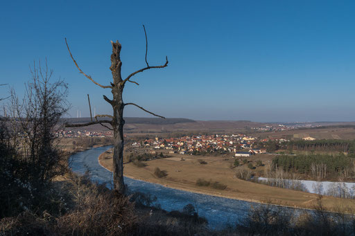 Ein Baumfragment streckt sich oberhalb von Fahr in den Himmel
