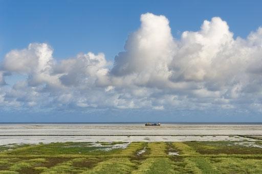 Der Hümmer-Bus fährt mit dem Autoreisezug über den Hindenburgdamm auf die Insel Sylt.  Das Wattenmeer bei Flut mit Nordseewasser bedeckt zeigt bei Ebbe seine grüne Seite.