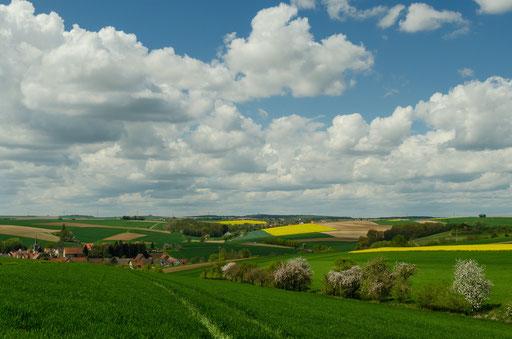 Blühende Raps-Landschaften im nördlichen Kitzinger Land