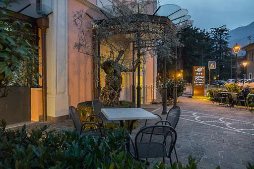 Olivenbäumchen vor dem Hoteleingang