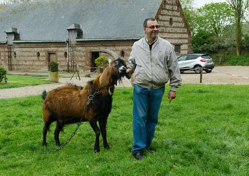 Monsieur Bernard hat den Ziegenbock fest im Griff (Besuch einer Ziegenfarm)