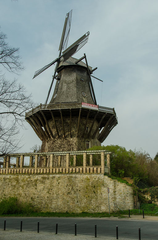 Windmühle am Schloß Sanssouci