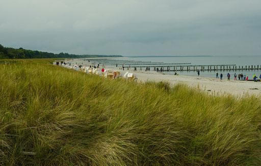 .Strand..   /Ostseeheilbad Zingst