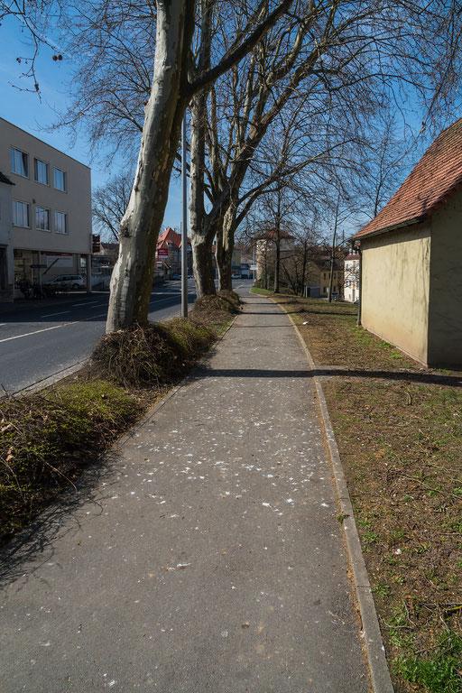 Die Kacke der Krackenkolonie am Hindenburgring West (B8) hinterläßt deutliche Spuren auf dem Gehweg