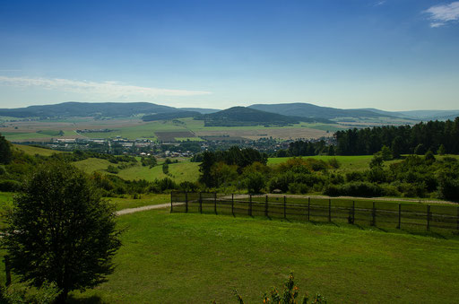 Blick vom Turm nach Geisa (Thüringen)