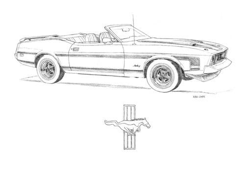 Le dessin fut réalisé avec l'utilisation d'un crayon HB et sur une feuille de papier blanche