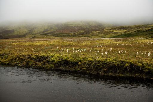 Nebel_Wasser_Wolken_Jürgen_Sedlmayr_Island_10