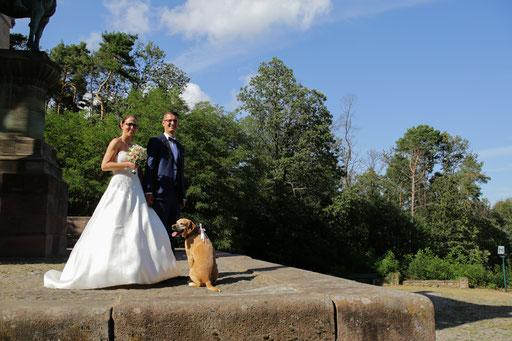 Hochzeitsreportage-Hochzeitsfotograf-Juergen-Sedlmayr-361