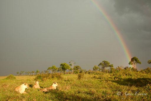 Orage et arc-en-ciel sur Bilashaka