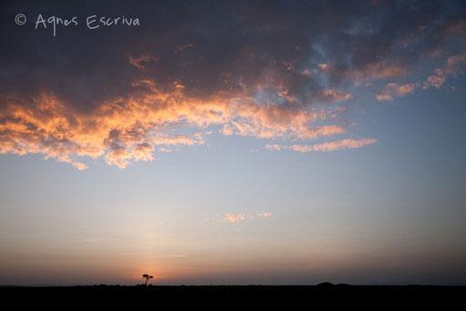 Le soleil se lève sur Musiara