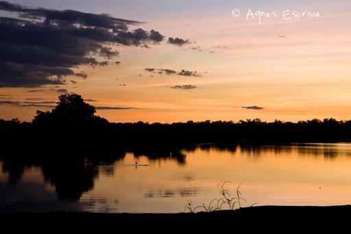 La rivière Luangwa au coucher du soleil
